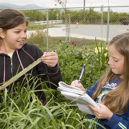 kids in the garden measuring plants